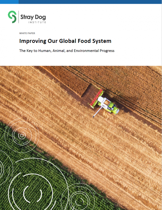 Improving Our Global Food System