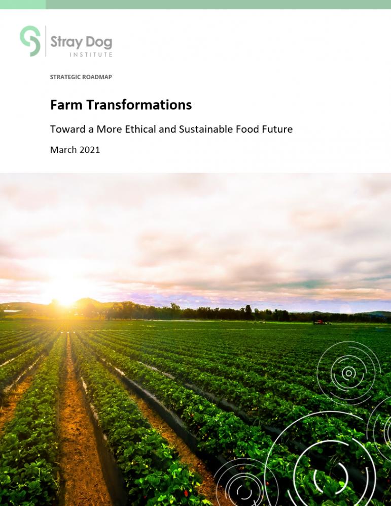 Farm Transformations roadmap thumbnail