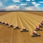 Twenty-two combine harvesters harvesting an industrial wheat field