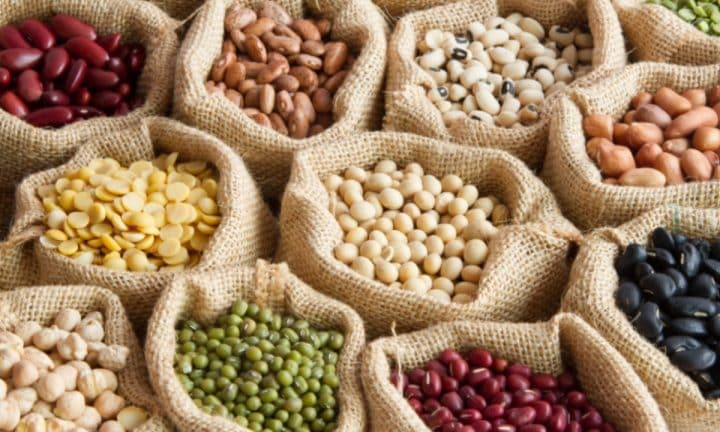 An array of plant-based foods such as beans, grains, seeds, and nuts